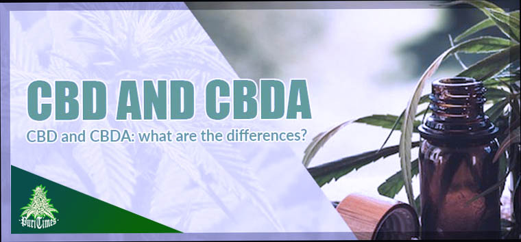 cbd and cbda cover