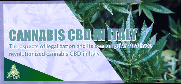 marijuana cbd in italy