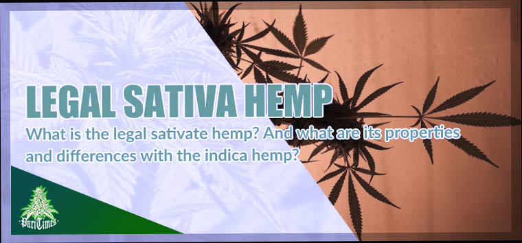 properties and differences between legal sativa hemp and indica hemp 1